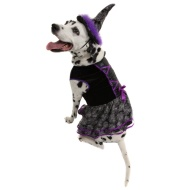 Dogs Halloween Costume - Medium/Large/X-Large - Witch