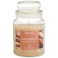Essence Candle Jar 18oz - Gingerbread
