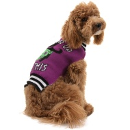 Dogs Halloween Jumper - Medium/Large/X-Large - Witch