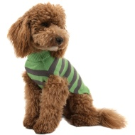 Dogs Halloween Jumper - Medium/Large/X-Large - Monster