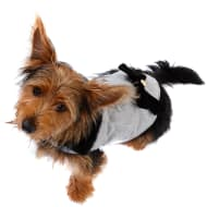 Dog Fashion Coat - X-Small - Medium - Girls Country Coat