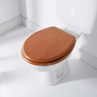 Addis Wood Finish Toilet Seat - Mahogany
