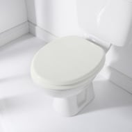 Addis Moulded Toilet Seat - White