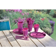 Picnic Dining Set 31pc - Purple