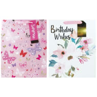 Large Gift Bags 2pk - Birthday Wishes