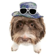 Dogs Summer Hat - Camouflage