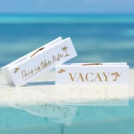 Logo Peg Beach Towel Clips 2pk - Vacay