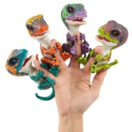 Fingerlings Raptors