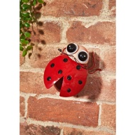 Bopping Head Bug Wall Art - Ladybird