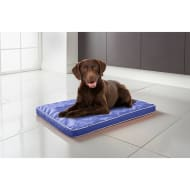Pet Air Flow Mat - Blue