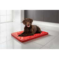 Pet Air Flow Mat - Red