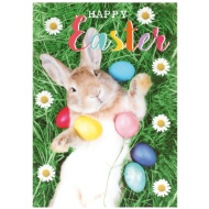 Easter Bunny & Eggs - Easter Card