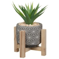 Decorative Foliage on Wooden Stand