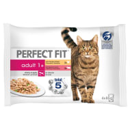 Perfect Fit Adult 1+ 4pk - Meaty