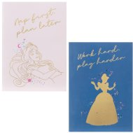 Disney Princess Notebooks 2pk