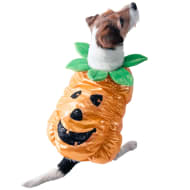 Halloween Dog Costume - X Small-Small - Pumpkin