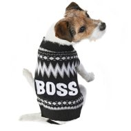 Doggy Jumper - X-Small - Small - Boss