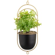 Hanging Planter with Foliage