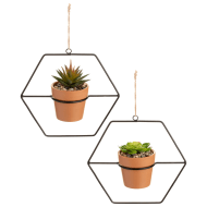 Black Wire Hanging Succulents in Terracotta Pot