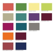 Dulux Feature Wall Matt Emulsion - Mulberry Burst 1.25L
