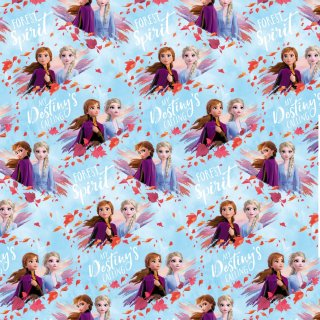 Disney Frozen Wrapping Paper 3m
