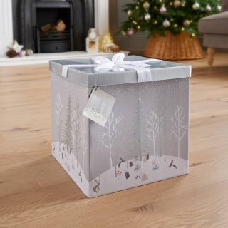 XL Christmas Gift Box with Bow & Tag - Silver