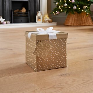 Medium Christmas Gift Box with Bow & Tag - Gold