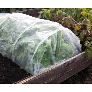 Poly Cover Grow Tunnel 3m