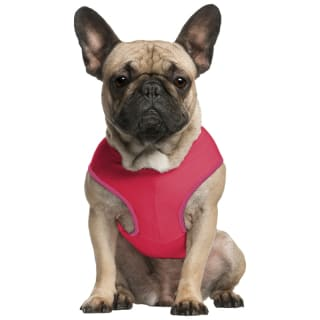Pet Cooling Vest - Red
