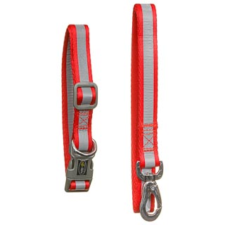 Reflective Collar & Lead Set - Red
