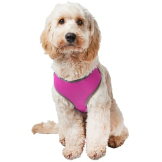 Pet Cooling Harness - Pink