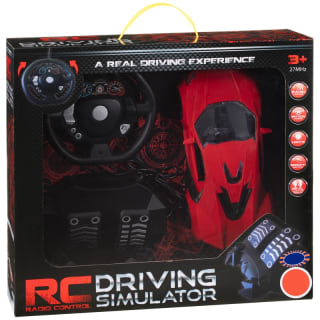 Radio Controlled Driving Simulator
