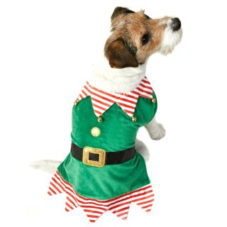 Elf Christmas Dog Costume XS-S