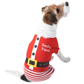 Santa Christmas Dog Onesie