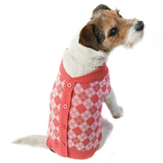 Doggy Cardigan - Small - Large - Pink