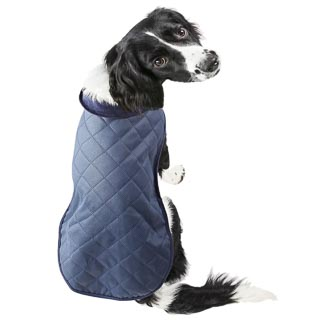 Quilted Dog Coat - X-Small & Small - Blue