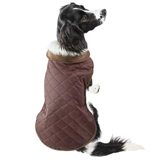 Quilted Dog Coat - Medium - X-Large - Brown