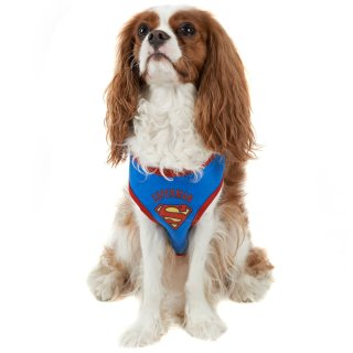 DC Comics Dog Harness - Superman