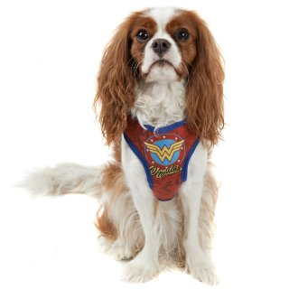 DC Comics Dog Harness - Wonder Woman