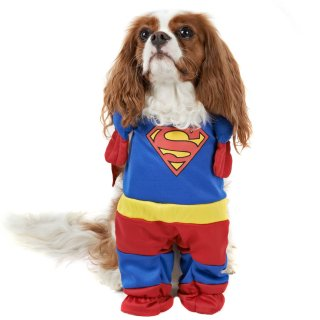 DC Comics Dog Fancy Dress Costume - Superman