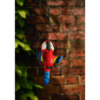 Big Eyed Parrot in Hoop Solar Light - Red