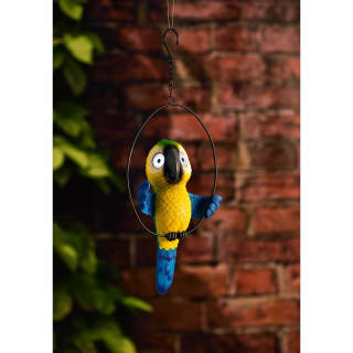Big Eyed Parrot in Hoop Solar Light - Yellow
