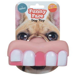 Funny Face Dog Toy - Teeth