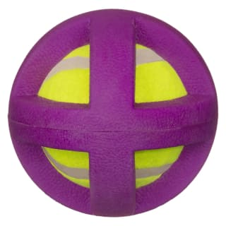 Gladiator Ball Dog Toy - Purple