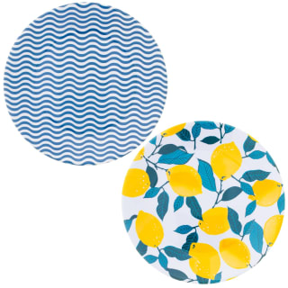 Riviera Picnic Plate - Waves