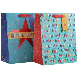 Large Gift Bags 2pk - Congratulations