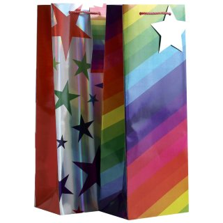 Bottle Gift Bag 2pk - Rainbow