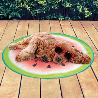 Pet Cooling Fruit Mat - Watermelon