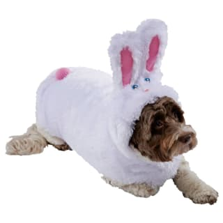 Dogs Easter Bunny Costume