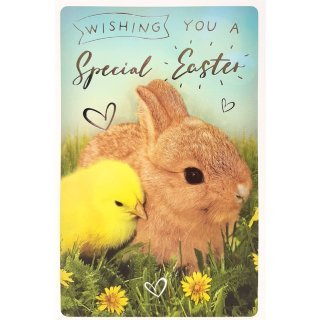Chick & Bunny - Easter Card